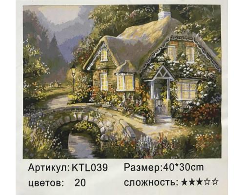 Рисуй по номерам Дом в лесу 40х30
