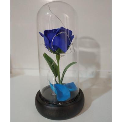 Вечная роза в колбе, высота 20 см, цвет синий