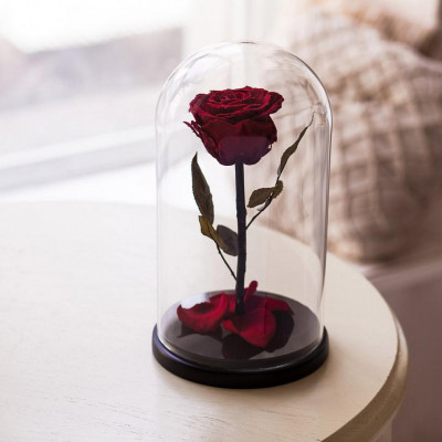 Вечная роза в колбе, высота 32 см, цвета на выбор