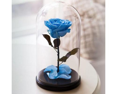 Вечная роза в колбе, высота 20 см, цвета на выбор