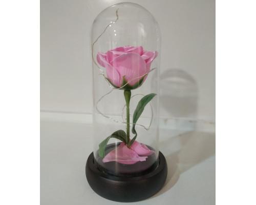 Вечная роза в колбе, высота 20 см, цвет светло-розовый